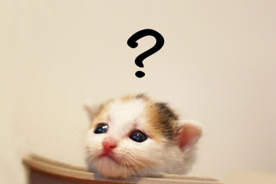 もしも支払う税金が10万円以上だった場合はどうすればいい?