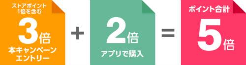 5のつく日キャンペーンポイント内訳